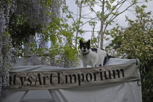 Monty on the Emporium roof