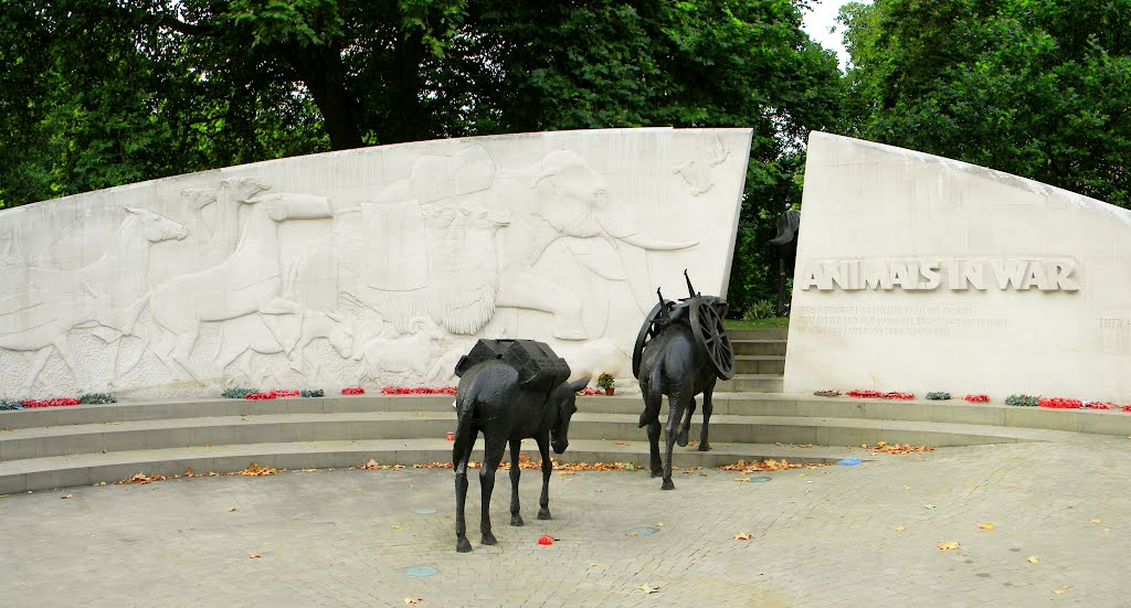 Mules from the Animals in War Memorial, Hyde Park, London (Image by Dominick Kosciuk http://www.panoramio.com/user/2132490?with_photo_id=78205404)